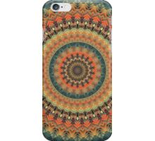 Mandala 71 iPhone Case/Skin