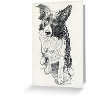 Drawing of Indy Greeting Card