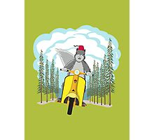 Squirrel on a Scooter Photographic Print