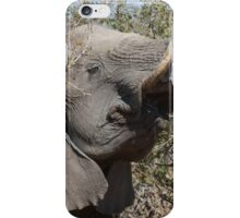 Savouring His Thorny Treat iPhone Case/Skin