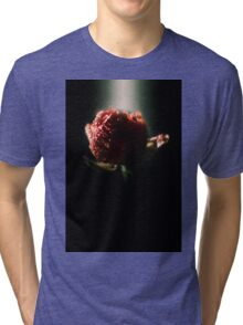 Spring time bloom, with lighting affects  Tri-blend T-Shirt
