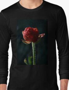 Spring time bloom, with lighting affects  Long Sleeve T-Shirt
