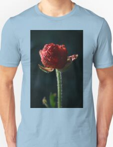 Spring time bloom, with lighting affects  Unisex T-Shirt