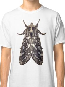 Lophocampa Argentata A Classic T-Shirt