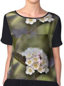 Tree Blossoms Chiffon Top