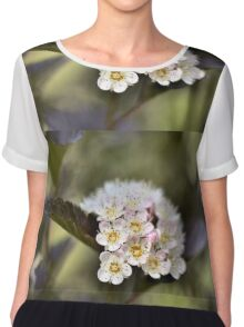 Tree Blossoms Chiffon Top