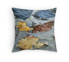 A Stone Wall II Throw Pillow