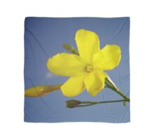 Yellow Jasmine Flower and Bud Against Blue Sky Scarf