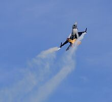 Smoking Falcon by TomGreenPhotos