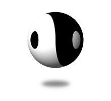 Yin Yang by Henrik Lehnerer
