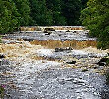 Aysgarth Falls by John (Mike)  Dobson