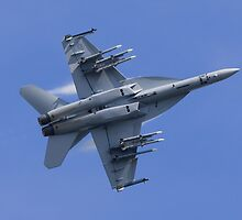 Super Hornet Ventral by TomGreenPhotos