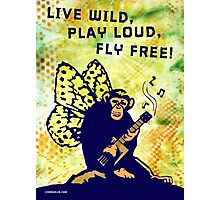 Live Wild, Play Loud, Fly Free Photographic Print