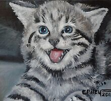 Marilyn the Cat by paintingsbycr10