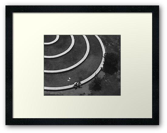 In The Circle by Dan Algina