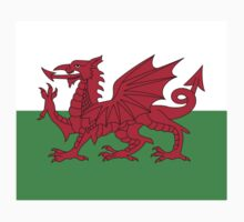 Wales Dragon Duvet Cover Bedspread Welsh Flag One Piece - Short Sleeve