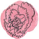 Carnation #1 - sticker only by Vicky Webb