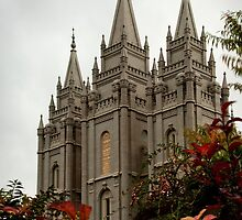 Salt Lake City Temple Angle by LaRae55