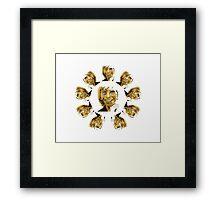 John Denver ~ [Brown Skin] Framed Print