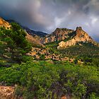 Bush tree and mountain under stormy skies by Ralph Goldsmith
