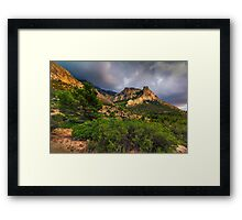 Bush tree and mountain under stormy skies Framed Print