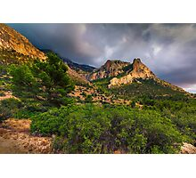Bush tree and mountain under stormy skies Photographic Print