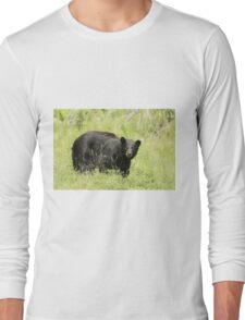 Black bear in a green field Long Sleeve T-Shirt
