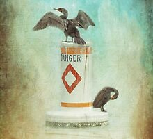 Danger by Susan Werby