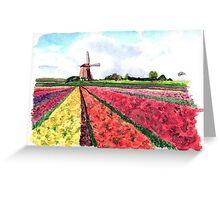 Holland flowers Greeting Card