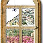 ... a little spider in Positano / Italy  ( 2 ) by Rachel Veser
