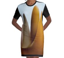Exciting Product Designs Graphic T-Shirt Dress