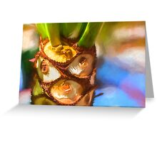 Plant Expressions X2 Greeting Card