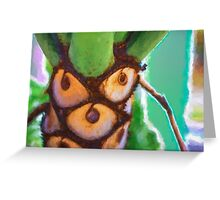 Plant Expressions X3 Greeting Card