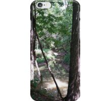 Raisbeck Park #2 iPhone Case/Skin