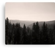 Sepia Tree Lined Valley  Canvas Print