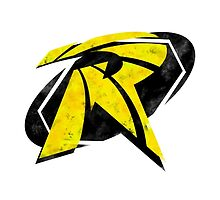 Robin Segmented Logo by JoshBeck