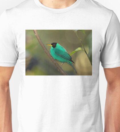 Green Honeycreeper - Costa Rica T-Shirt
