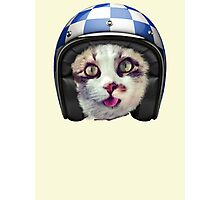 Biker Cat Photographic Print