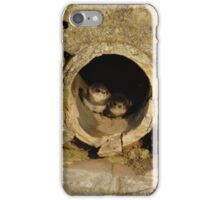 Swallow Babies In Pipe iPhone Case/Skin