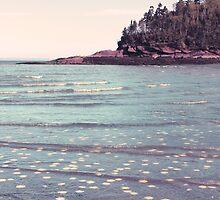 Treasures Beneath The Waves by Stephanie Rachel Seely