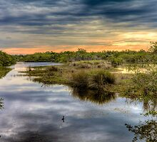 Ding Darling Bailey Tract by njordphoto