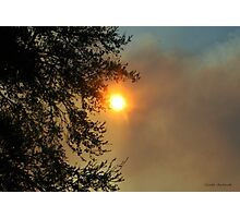 Sun and Fire in the Everglades Photographic Print