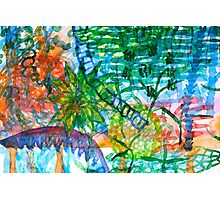 Jungle View With Rope Ladder  Photographic Print