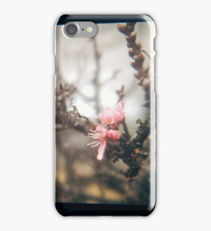 Through the viewfinder - winter blossoms iPhone Case/Skin