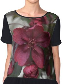 Red Cherry Blossoms Chiffon Top