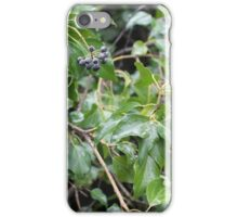 Plant with fruits iPhone Case/Skin