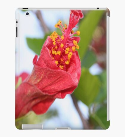 Curled Petals of A Red Hibiscus Bud iPad Case/Skin