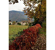 Autumn in Bolzano Photographic Print