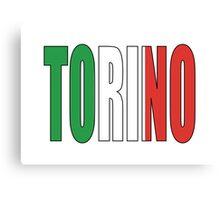 Torino. Canvas Print