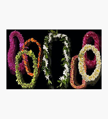 The Lei of Hawaii Photographic Print